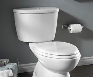 Dual Flush Toilet Tanks