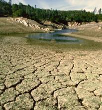 Drought Causing Plumbing Problems