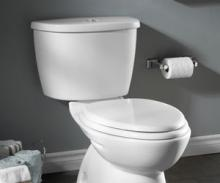 Dual Flush Toilet Tanks