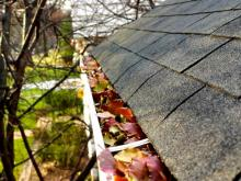 Gutter cleaning tips to avoid major issues