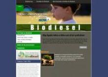 Biodiesel Sustainability